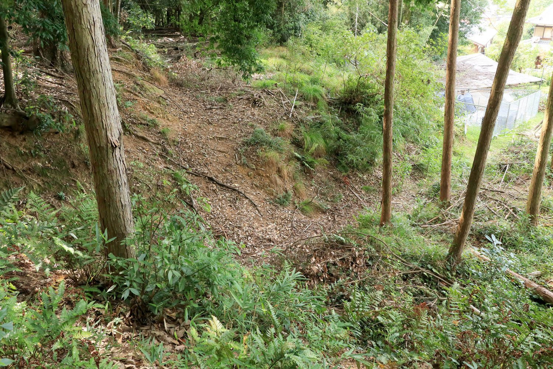 斜面を寸断する一直線の竪堀。
