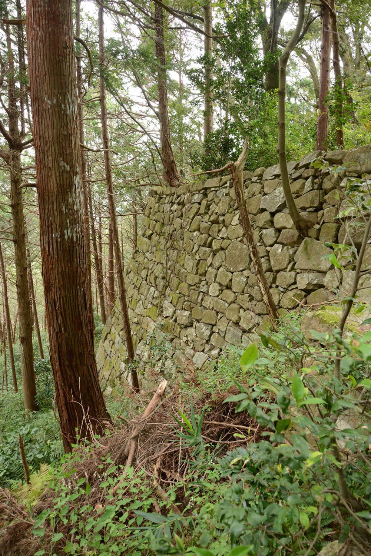 ほぼ垂直に近い野面積み石垣。