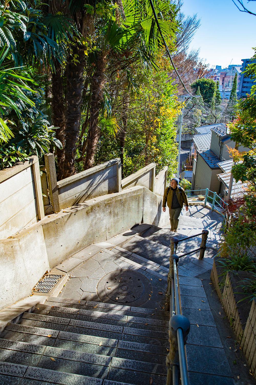 階段は大小計5つの曲がり角をもつ。この先にどんな風景が待つのか期待できるのも曲がり階段の魅力!