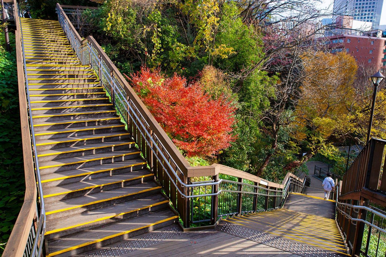 亀塚公園 メイン
