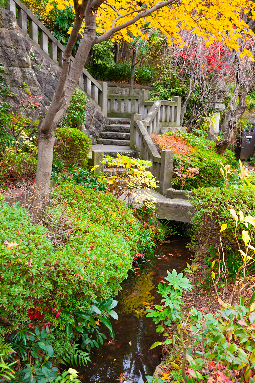 薬師の泉はほぼ枯れているが、庭園の池では水が湧いているとも。