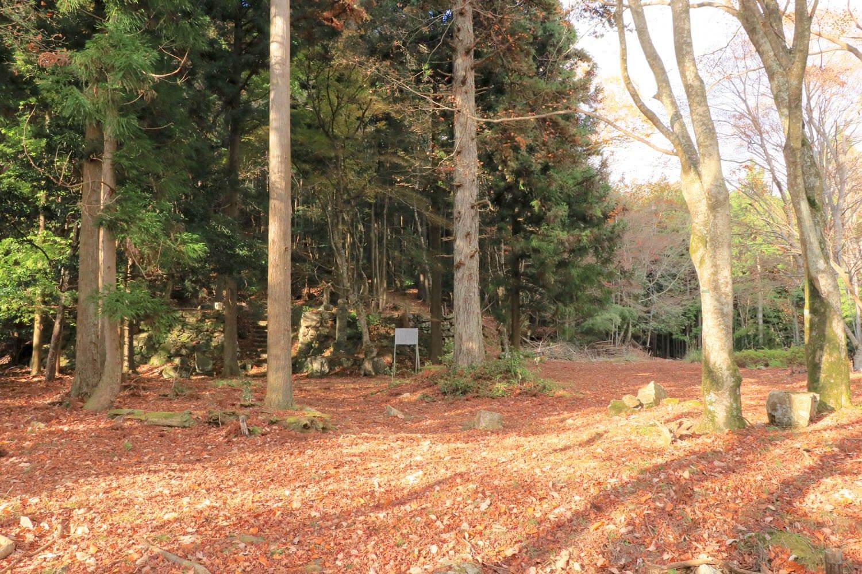 圓林寺跡。木立の中に高さ1mほどの石垣。