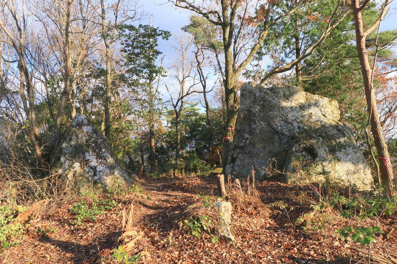 東郭の中央部は巨石で幅を狭めて平虎口風に。