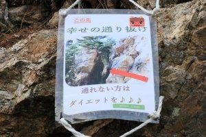 kanayama_15_IMG_9676