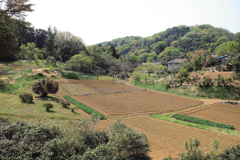 小野路の手前に開けた場所があり、丘陵地帯に畑が作られていた。