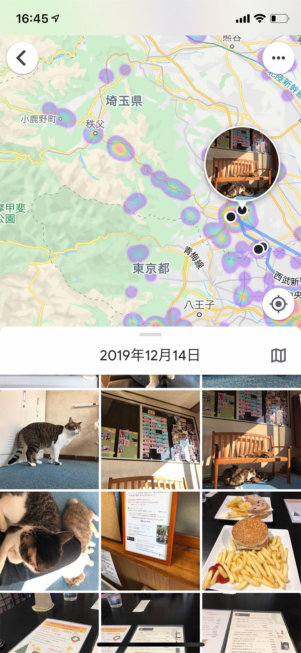 取材で猫カフェに訪れたときの画像が出てきた!