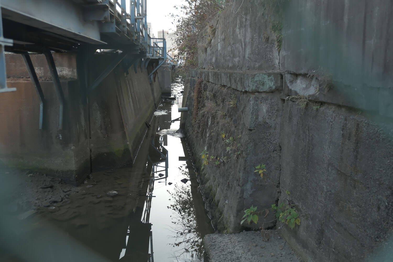 金網越しから水路を覗く。この部分は以前から覗けたが、左の部分は暗渠になっていた。2021年2月撮影。