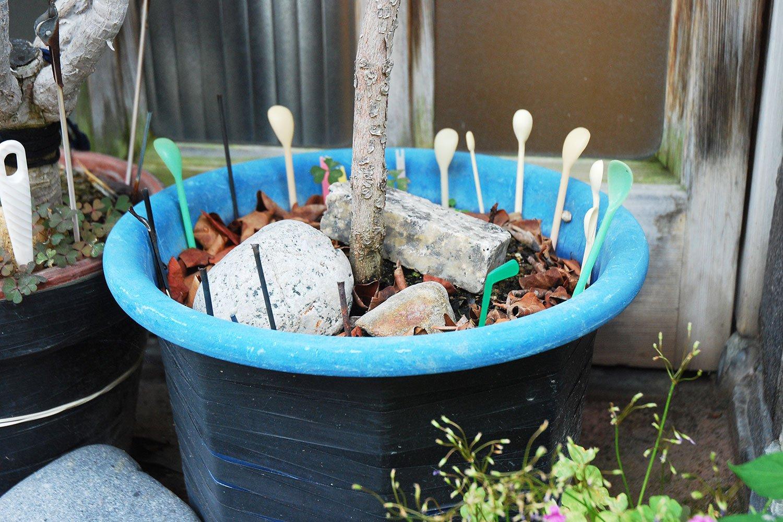 マドラーがたくさん刺さった鉢。