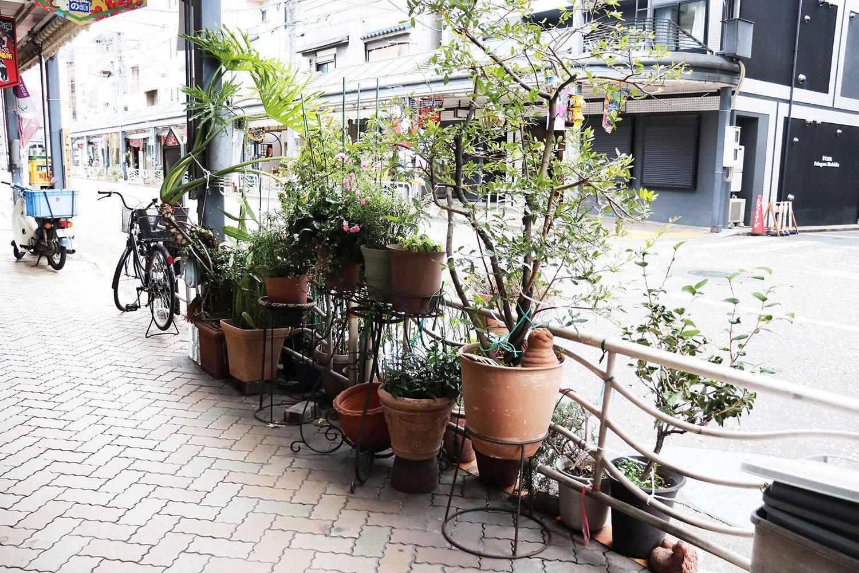 鉢植えに溢れる商店街。
