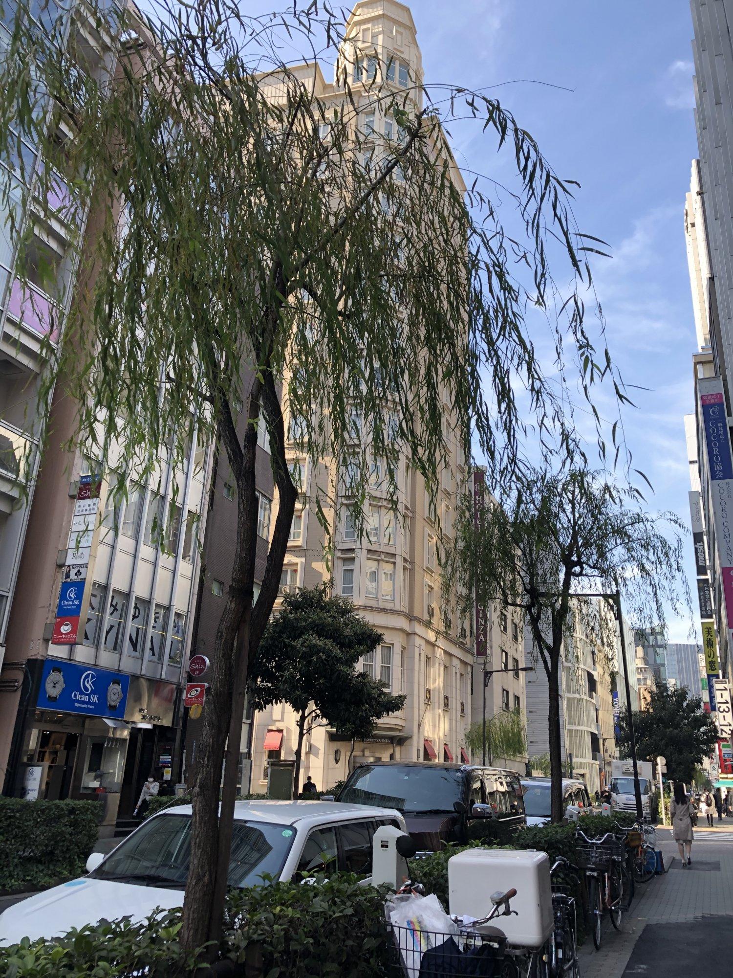 昭和62年(1987)には一部で柳の街路が復活……したけど、昔ほどには存在感がない。