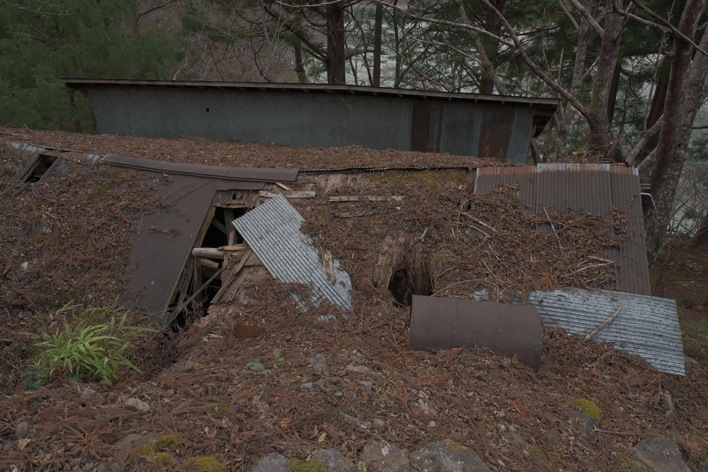小道から見える工場跡の屋根は朽ちていた。