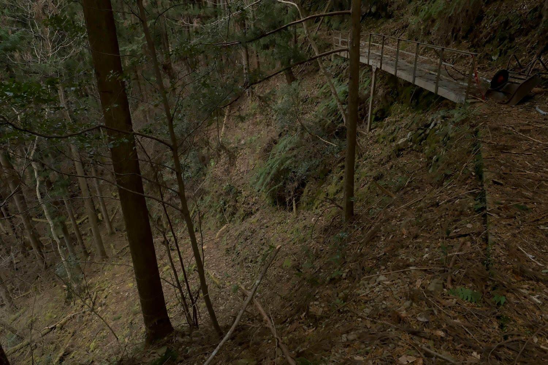しばし歩いていくと橋が崩れて窪地へ降りる迂回路となった。この先で引き返す。