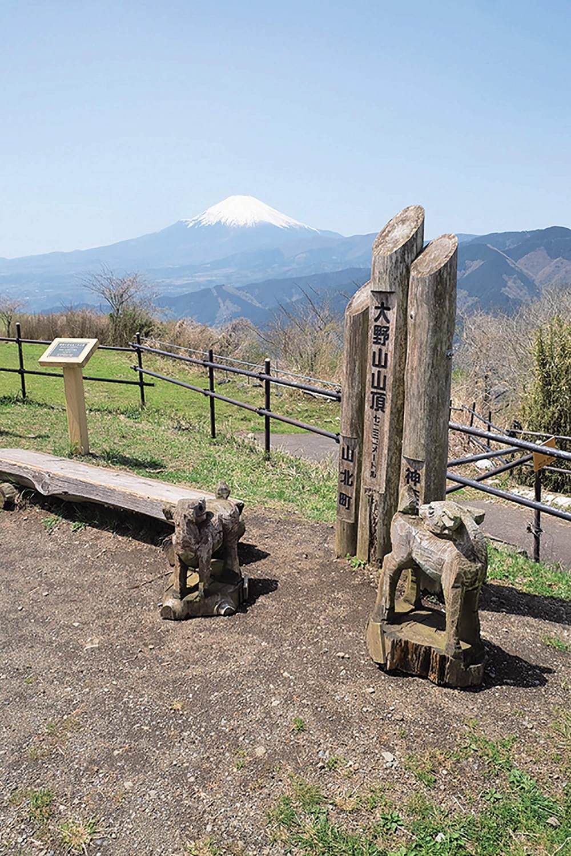 大野山の山頂にある標識。これがないとどこが山頂なのかがわからない。