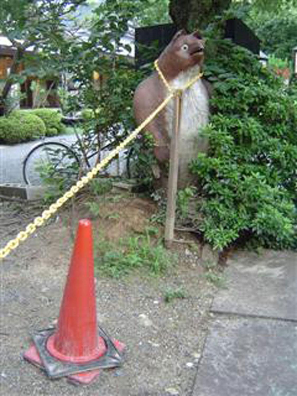 京都で発見した、チェーンポールとしてはたらくタヌキ(2007年)