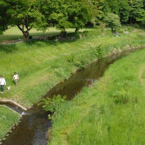 野川沿いを歩いて、はけの森から深大寺 〜武蔵小金井・深大寺エリア散歩コース〜
