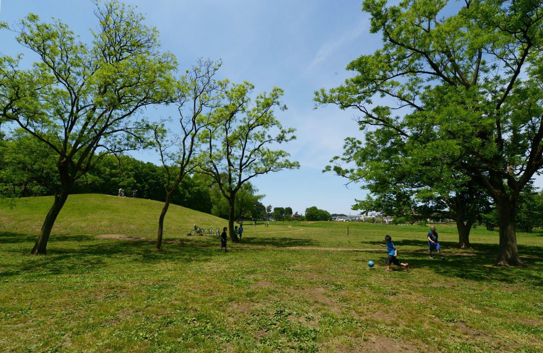 01_武蔵野公園 (2)