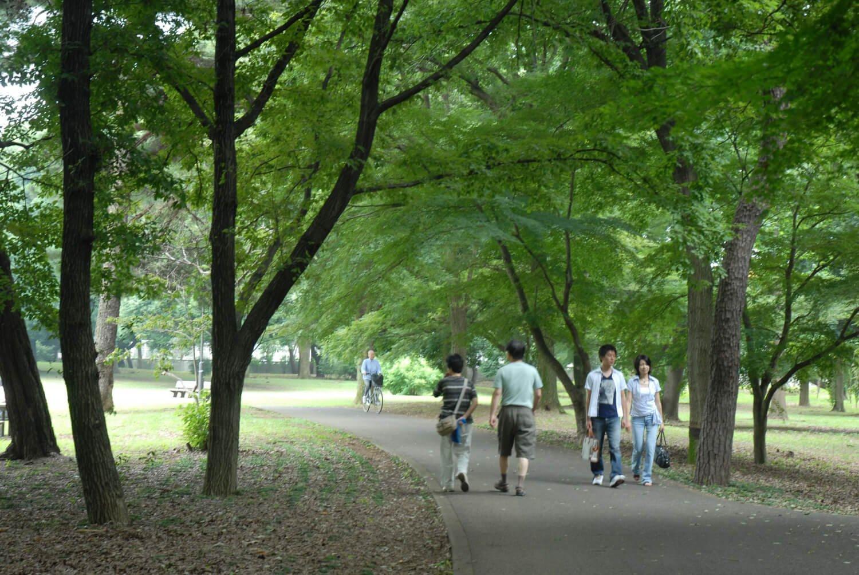 園内には武蔵野の自然が残る。