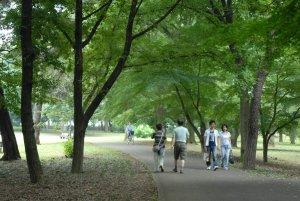 02_野川公園 (3)