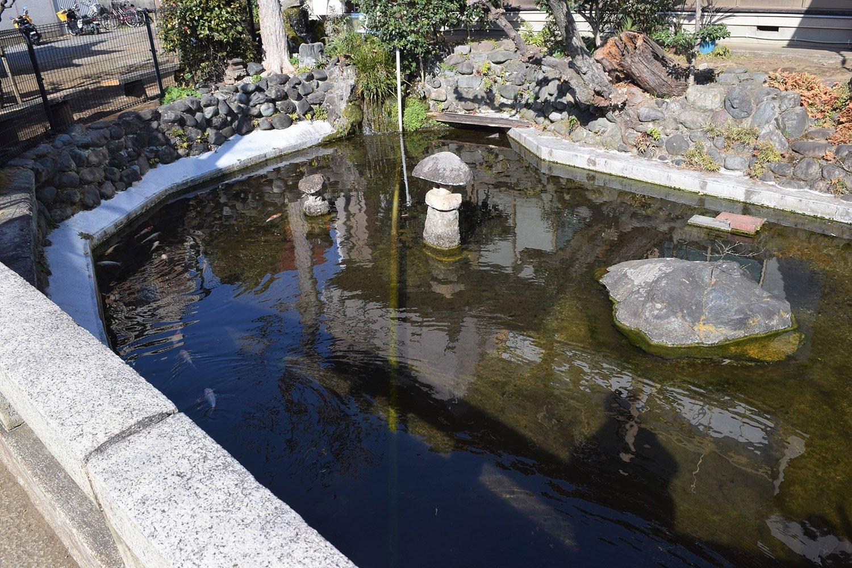 境内には鯉や亀のいる池があり、子どもと一緒に眺めて過ごした。