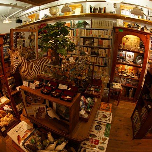 書店めぐりにぴったり! オリジナリティが光る下北沢の本屋・ブックカフェ6選