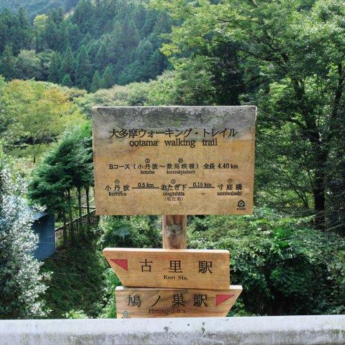 松の木尾根から鳩ノ巣渓谷。奇岩、巨岩の渓谷歩きと眺望のいい展望台へ【奥多摩極上渓谷ルート】