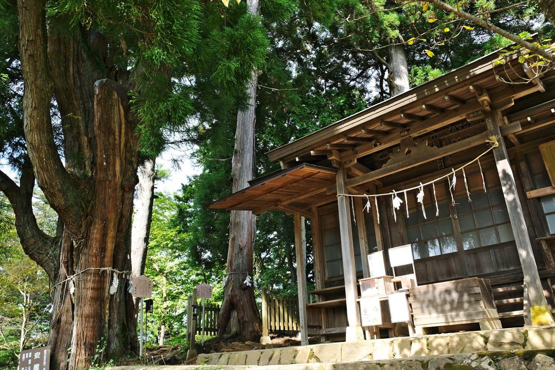 富士峰園地の上には、ひなびた産安社や夫婦杉、安産杉などの名木があり、登って損はない。