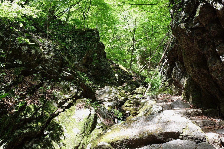 5月ごろは新緑が美しい。綾広の滝の近くには東屋があり、人気の休憩スポット。