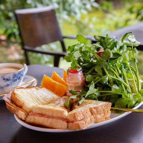 南青山の隠れたオアシス。『蔦珈琲店』で楽しむ、庭とコーヒーと無駄話。