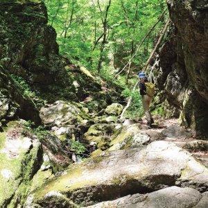 御岳山から岩石園へ。滝や渓谷を巡るロングコース ~東京都 青梅市・檜原村~【東京発日帰り旅】