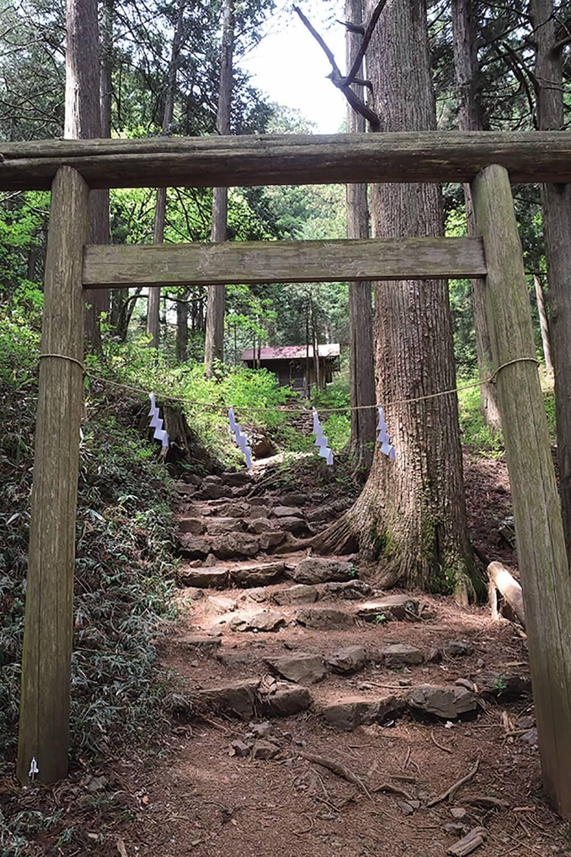 大岳山の登り口にある大嶽神社。オオカミの狛犬が神社を守っている。