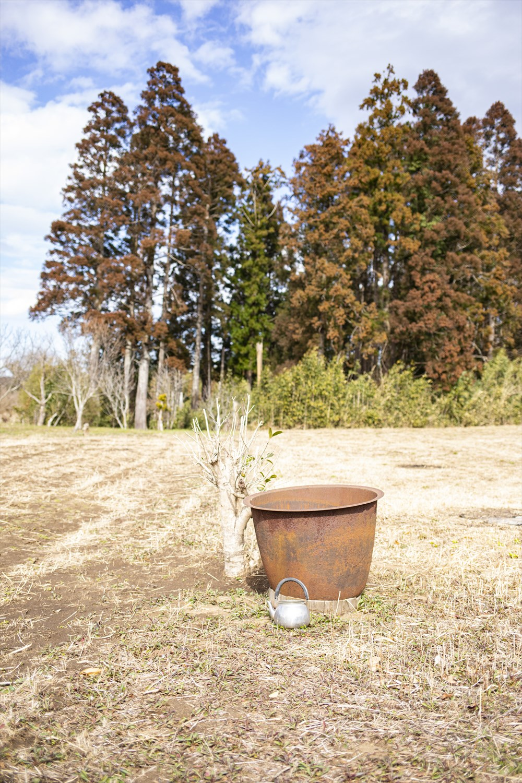 畑の真ん中に、真っ赤にさびた五右衛門風呂の釜が放置されていた。