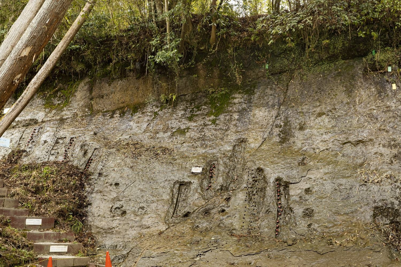一見なんということのない崖だが、上部に走る線が地磁気逆転があった時代を示す。