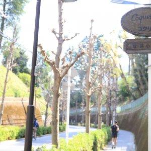 文化と歴史薫る護国寺・江戸川橋は、歩くほどに住みたくなる文教地区!【ぶらりマンション巡り】