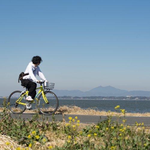 自転車で霞ケ浦一周! つくば霞ヶ浦りんりんロードを初心者が日帰りで走ってみた