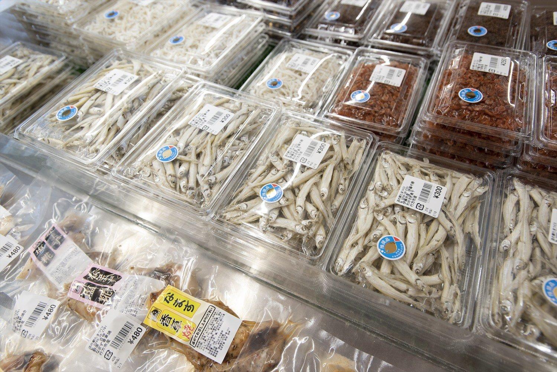 霞ケ浦の魚介類。