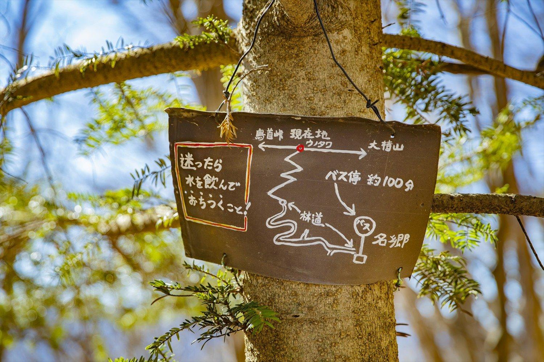 ウノタワの分岐点に立つ木にも案内版が。