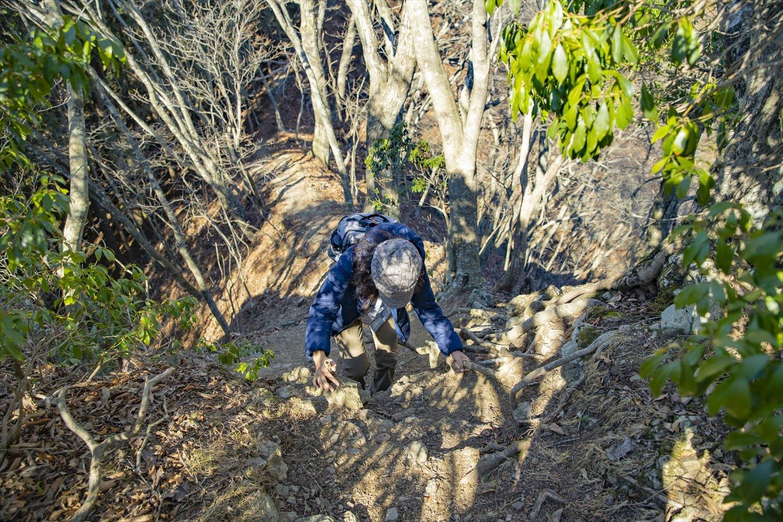 根っこを綱代わりに、崖を登り下りする所も。