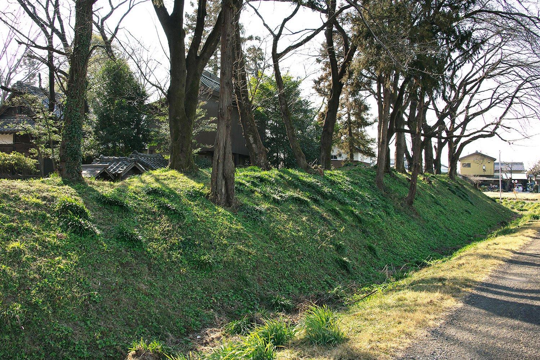 東西100m、南北80mの敷地を高さ2mの土塁が囲む。以前は堀に湧水もたまっていたとか。