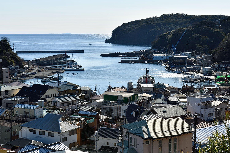 高台から港を望む。