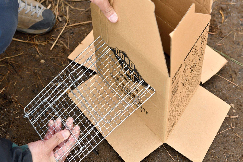 段ボールに網を差し食材を並べる。