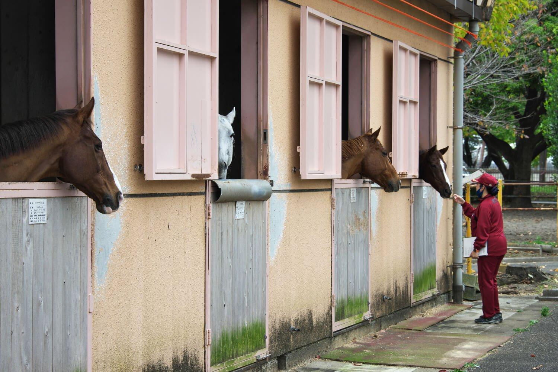近代五種競技の馬と広報班長・川元ゆみさん。赤いジャージが学校職員と選手の制服だ。2020年11月撮影。