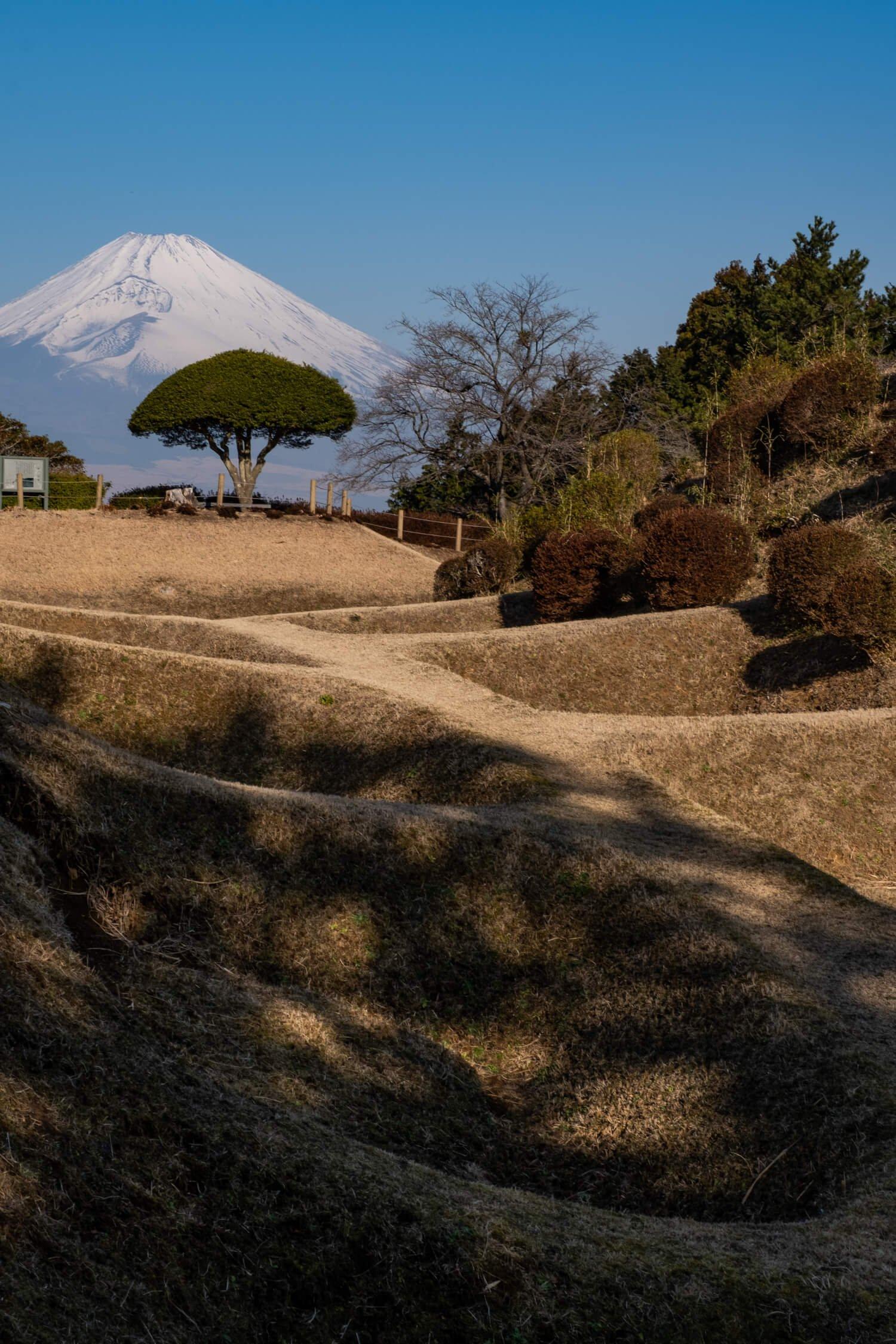 ユニークな形状の障子堀の先に富士山が悠然と姿を見せている。