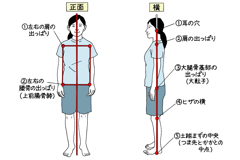 正面から見て、左右①②の4カ所を線で結んで左右対称の長方形ができるのがよい姿勢。横から見たときには、①〜⑤を結んだ線が体の中心を通るのがポイント。