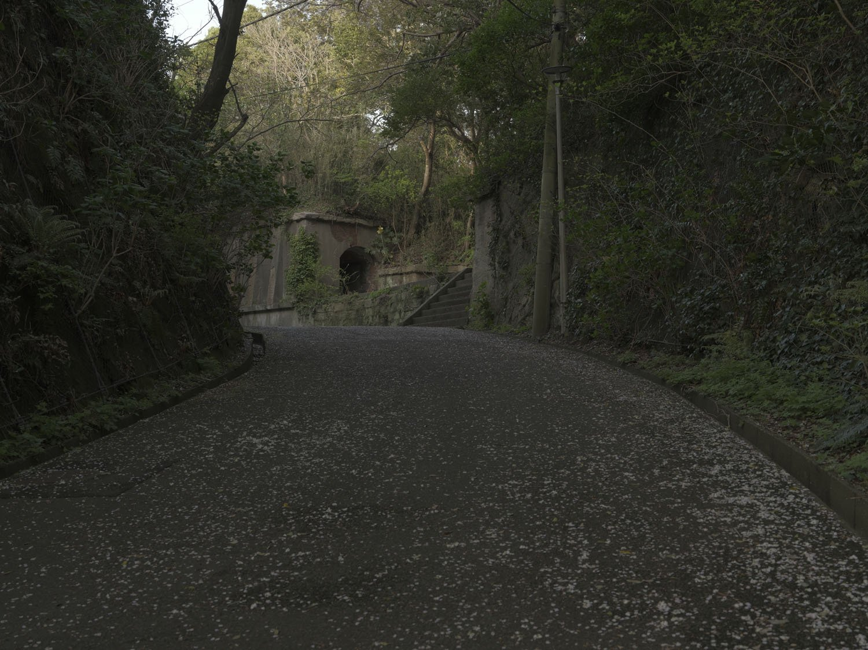 これは廃線跡の雰囲気がする。ちなみにこの道は元々砲台へ通ずる軍道であった。