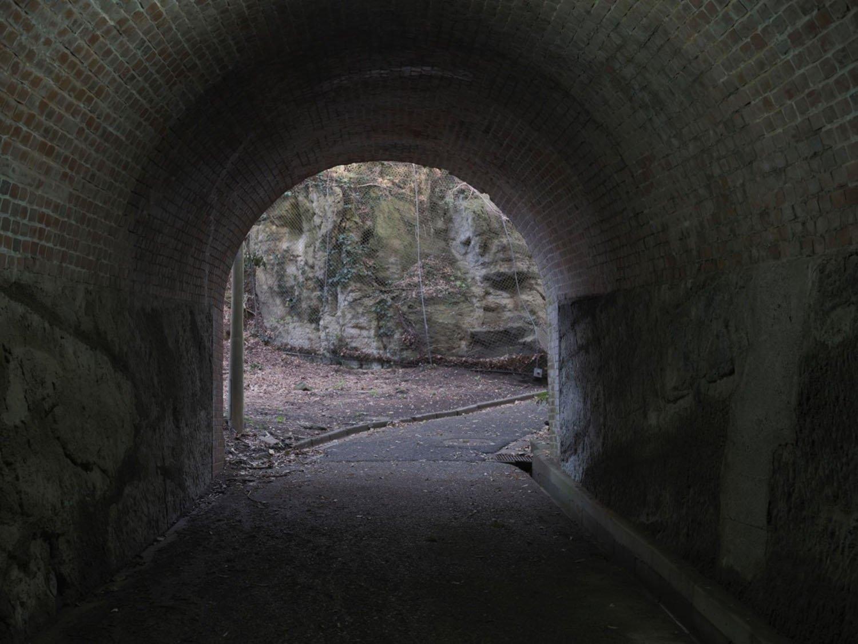 トンネル出口の先は薄暗く岩盤が剥き出しになっている。そこにあるのは……。