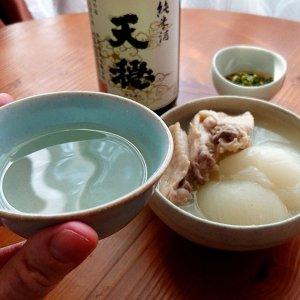 骨つき鶏と新玉ねぎのくたくた煮に「天穏」【山内聖子の偏愛する日本酒とつまみの話】