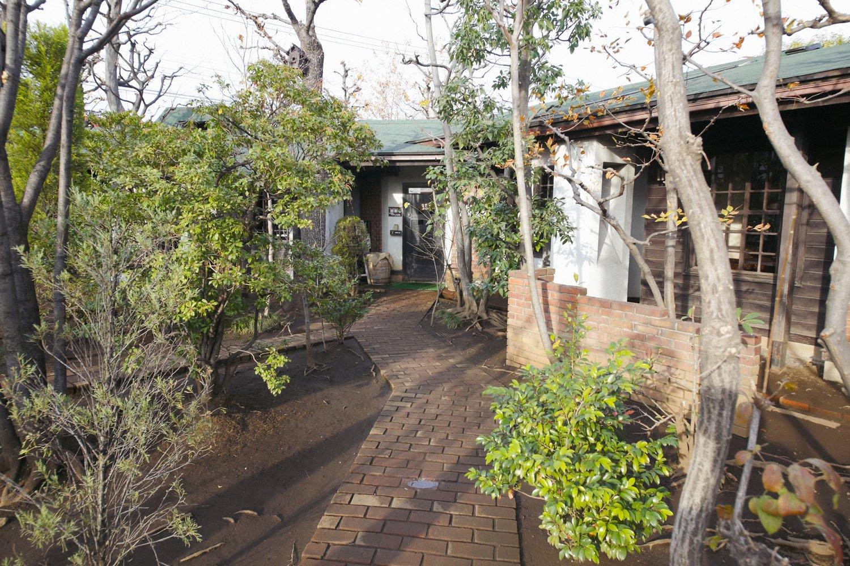 店を囲む庭と木々。木は当初の3分の1に減ったが今も豊か。2月には河津桜も咲く。