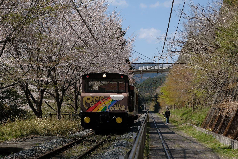 下り線はトロッコ列車の線路として活用。廃線跡が現役というのは、ちょっとややこしい。「シェルパくん」と名付けられた列車が坂を下ってきた。