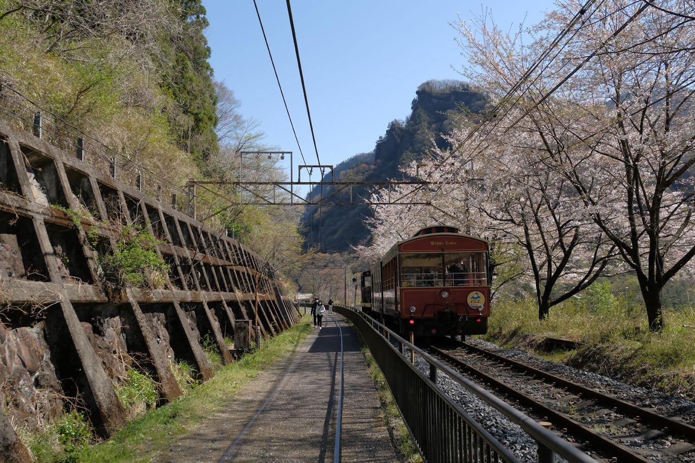 桜の木や擁壁(ようへき)は現役時代から変わらない。架線柱も残され、下り線にはまだ架線も張られており、動態保存されているEF63のために通電している。