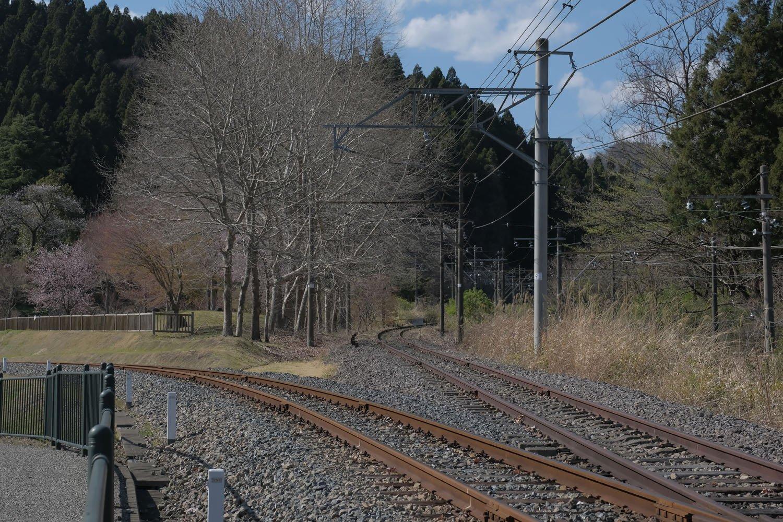 上り線から別れ、現役時代からあった地下道を利用して峠の湯に出る。と、前方にポイントが見えた。左が峠の湯駅へ延びる新設された線路。右は新線跡で、もしトロッコ列車が延伸していたら乗りごたえあっただろう。